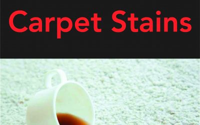 How to: Remove Carpet Stains Easily
