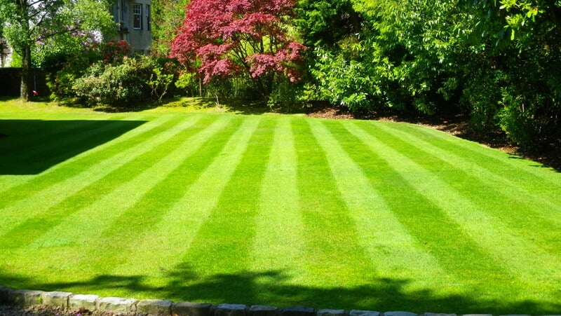 outdoor cleaning checklists - lawns and garden