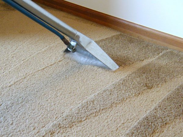 End of Lease Carpet Cleaning – Steam Cleaning or Dry Cleaning