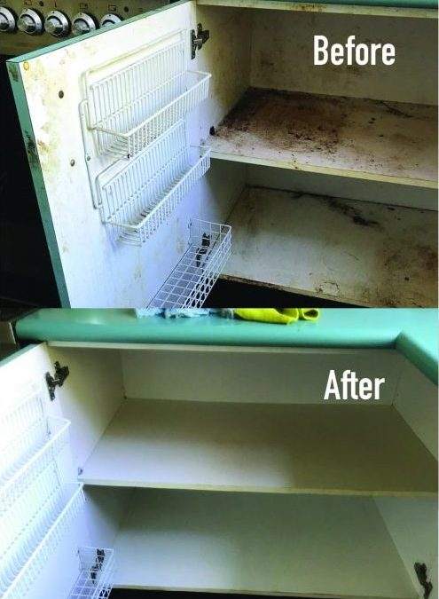 Clean Kitchen Cabinets – Tips & Advice