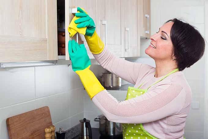 clean cabinet handles