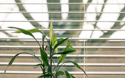 Best Way to Clean Window Blinds – Tips from the Experts
