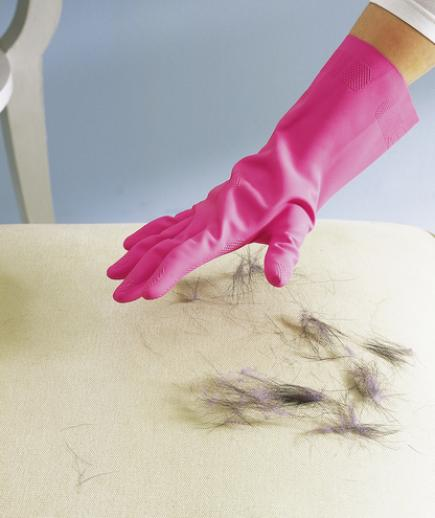 Cleaning-Up-Dog-Hair-With-Just-A-Rubber-Glove