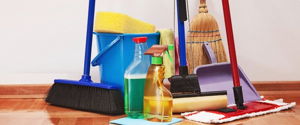cleaning supplies pet owners